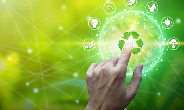 shutterstock 1222262665 750x450 - So starten Sie ein umweltfreundliches Online-Geschäft